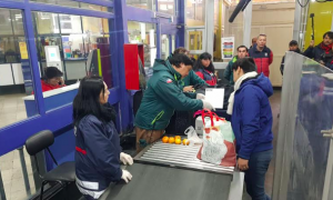 SAG llama a turistas a no ingresar productos de origen vegetal y animal por pasos fronterizos